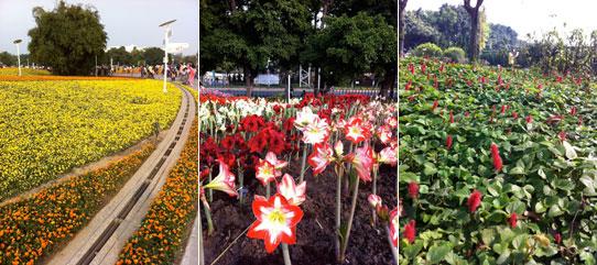 2010台北国際花博覧会
