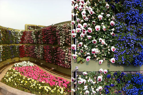 2010台北国際花博覧会 布花園