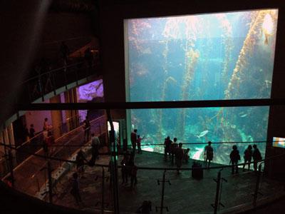 台湾最南ビーチリゾート、墾丁(ケンティン)への旅 その3★ 国立海洋生物博物館