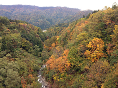 2013年秋、白馬近隣の紅葉。