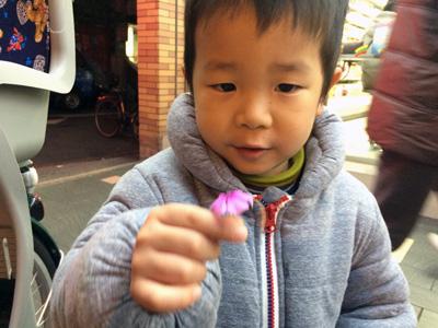 昼休みに仕事終わりに、自転車で物件を見まくっていた時、付き合わせっ放しだった息子がお花をくれたのには参りました。涙