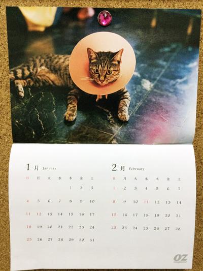 台湾特集,オズマガジン,川島小鳥,付録のカレンダー