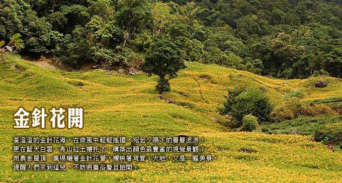 引用:花蓮旅人新聞